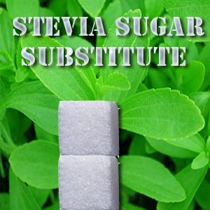 Solution for Your Sweet Tooth (Part 1)